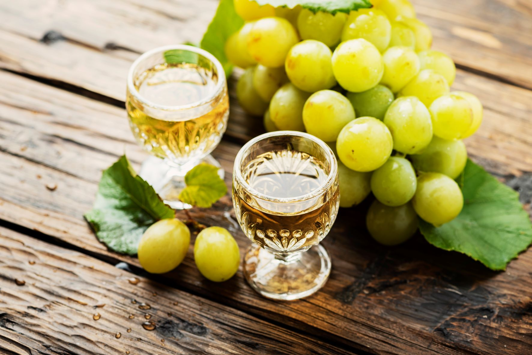 Trovare una selezione di vino locale ad albenga